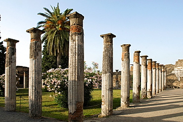 House of the Faun, archeological site of Pompeii, province of Naples, Campania region, southern Italy, Europe
