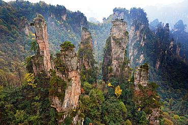 China, Hunan Province, Zhangjiajie, Wulingyuan Scenic Area, Zhangjiajie National Forest Park, Unesco world Heritage