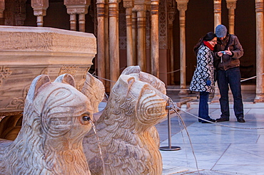Detail of Lions fountain Courtyard of the lions Palace of the Lions Nazaries palaces Alhambra, Granada Andalusia, Spain
