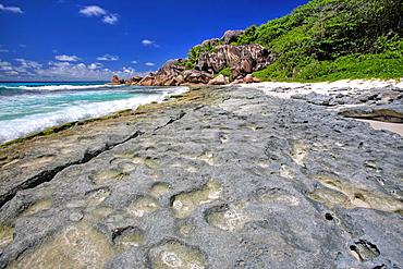 Reef at Grand Anse, La Digue Island, Seychelles