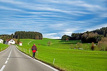 ruralscape, canton St Gallen, Switzerland