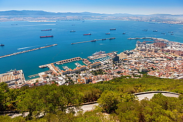 Top of the Rock view over Gibraltar Harbour
