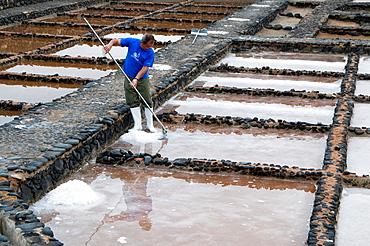 Spain, Canary, Fuerteventura, Salinas del Carmen, salt-works.