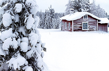 Little red cottage in winter landscape in Purnuvaara in swedish lapland