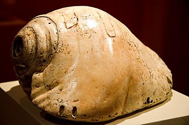 Peru  Pre-Columbian seashell