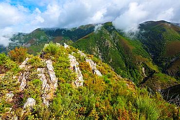 Fuentes del Narcea, Degana e Ibias Natural Park, Asturias, Spain, Europe.