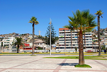 Coastal city of Coquimbo Chile