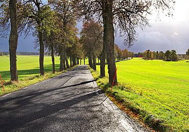 avenue Katrineholm Sweden.