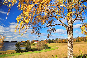 Bogsta Sodermanland Sweden.