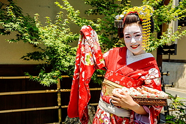 Tourist dressed as Maiko on the streets of Kyoto, Japan, Asia