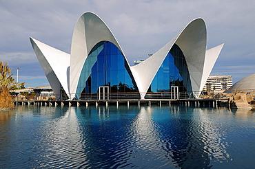 L'Oceanografic, City of Arts and Sciences, Valencia, Spain