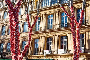 Europe, France, Bouche-du-Rhone, Aix-en-Provence European Capital of Culture 2013, Cours Mirabeau, contemporary art trail in the Art Scene, work of Yayoi Kusama