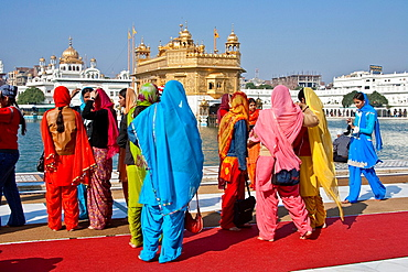 Female Sikh Pilgrims, The Golden Temple of Amritsar, aka The Harmandir Sahib or Hari Mandir Punjab, India