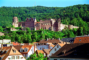 Heidelberg cityscape and castle Germany