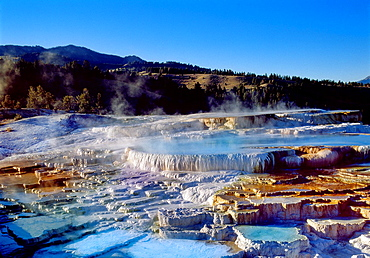 Mammoth Hot Springs Minerva Terrace Yellowstone National Park Wyoming United States of America USA.