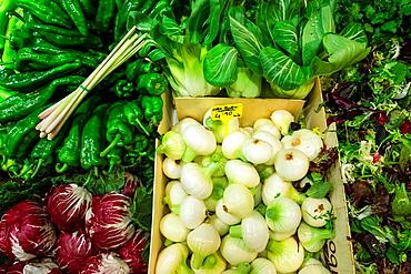 Fresh vegetables, Olivar Market, Palma, Mallorca, Balearic Islands, Spain