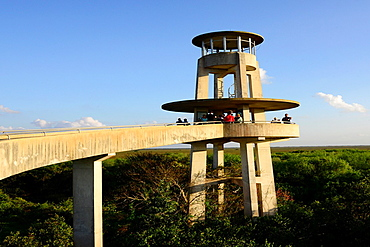 Shark Valley Visitors Observation Tower Everglades National Park Florida US