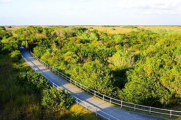 Shark Valley Loop Road Everglades National Park Florida US