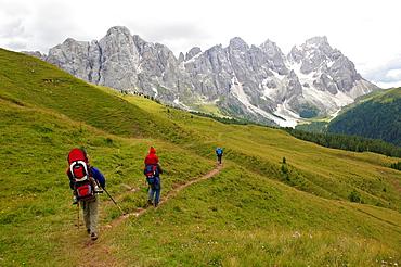 Families with babiies hiking in val Venegia In the background the north side of Pale di San Martino Parco Naturale Paneveggio, Pale di San Martino Trento Trentino Alto Adige Italy