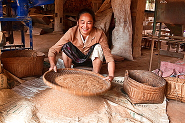 ethnic Khmu woman sifting rice, Luang Nam Tha, Laos