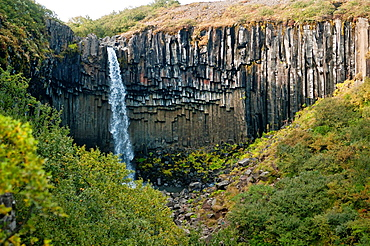 Beautiful Svartifoss waterfall, Skaftafell National Park, southern Iceland