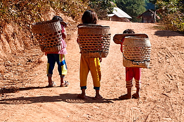 Akha girls and their bamboo baskets, Muang Singh, Laos