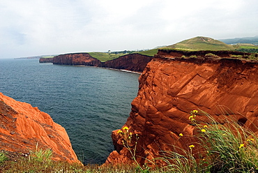 sandstone cliffs of Etang-du-Nord cape, Cap aux Meules island, Magdalen Islands, Gulf of Saint Lawrence, Quebec province, Canada, North America