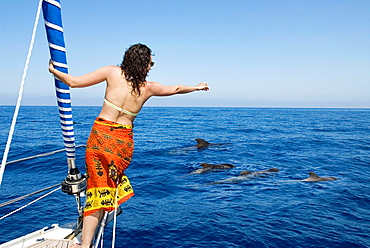 young woman standing at the prow during a boat trip for whales discovery, Tenerife, Canary Islands, Atlantic Ocean