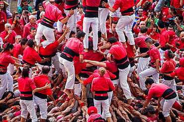 Colla Joves Xiquets de Valls 'Castellers' building human tower, a Catalan tradition Biannual contest bullring Tarragona, Spain