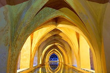 Royal Alcazar,`Banos de Dona Maria de Padilla', baths of Dona Maria de Padilla,Sevilla,Andalucia,Spain