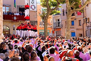 Nens del Vendrell 'Castellers' building human tower, a Catalan tradition Fira de Santa Teresa, town festival Placa Vella El Vendrell Tarragona province, Spain