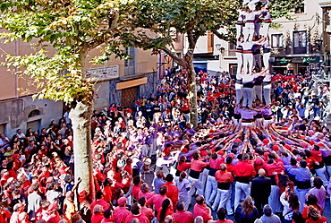 Colla Jove Xiquets de Tarragona 'Castellers' building human tower, a Catalan tradition Fira de Santa Teresa, town festival Placa Vella El Vendrell Tarragona province, Spain