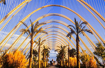 The Umbracle,City of Arts and Sciences, by S Calatrava Valencia Spain