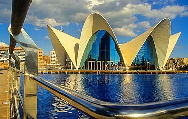 Oceanografic by Felix Candela, in City of Arts and Sciences by S Calatrava Valencia Spain