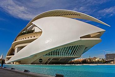Palacio de las Artes Reina Sofia,City of Arts and Sciences by S Calatrava Valencia Spain
