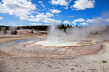 Upper Geyser Basin, Yellowstone National Park, Idaho, Montana and Wyoming, USA.