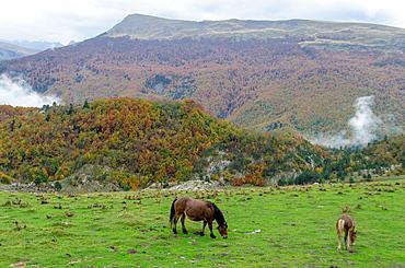 Panoramic views of Belagua, Roncal Valley, Navarre, Spain