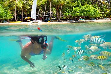 Thailand landscape, underwater sea view of snorkeling woman and fish, Ko Samet Beach, Thailand, Asia