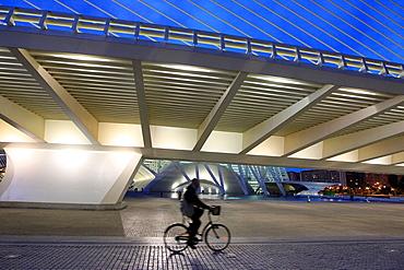Azud del'Or bridge at Valencia by santiago Calatrava