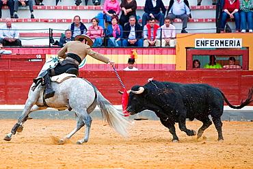 Andy Cartagena, bullfighter on horseback spanish, Jaen, Spain, 13 october 2008