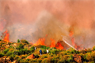 Fighting against the fire on the semi-island of cesme, Turkey