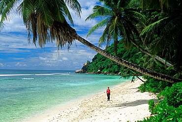beach of Mahe island, Republic of Seychelles, Indian Ocean