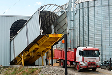 Canola oil (rapeseed) production at Molinera Gorbea, a grain processor involved in the manufacture of fish food in Temuco, Chile.