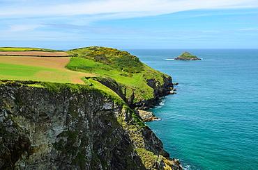 Com Head on the North Cornwall coast near Polzeath, Cornwall, England.