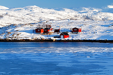Red cottages in norwegian fjords, in front of frozen sea.