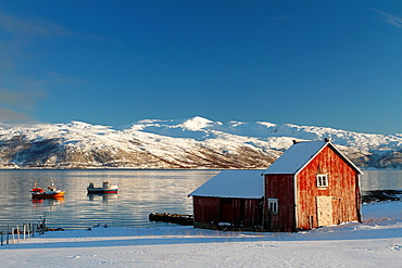 Red cottage in a fishing village near Tromso, Norway.