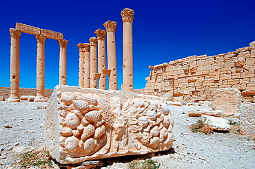 The bas-reliefs on the marble in Temple of Bel in the ancient city of Palmyra, Syria.