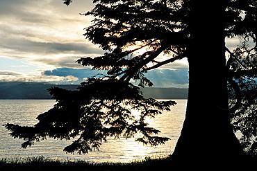 Skidegate Inlet, Shingle Bay, Haida Gwaii (Queen Charlotte Islands)- Sandspit, British Columbia, Canada.