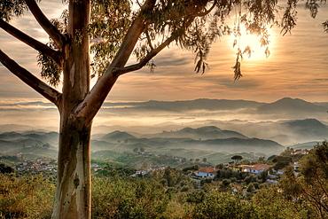 Valtocado Andalucia Spain.