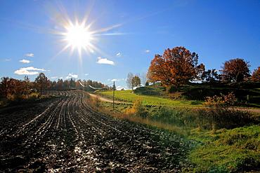 Bjornlunda, Sodermanland, Sweden.